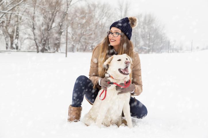 雪の中犬を可愛がる女性