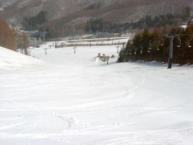 場 山 スキー 宝 天気 樹 台