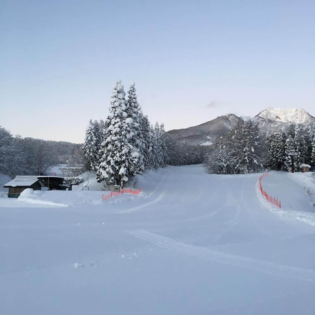 場 池の平 温泉 スキー