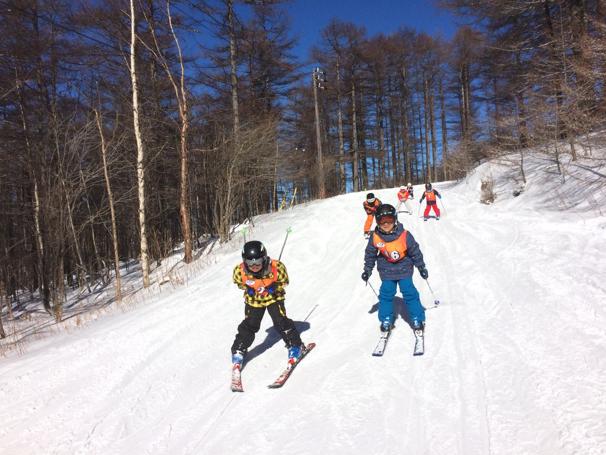 湯の丸スキー場のコース