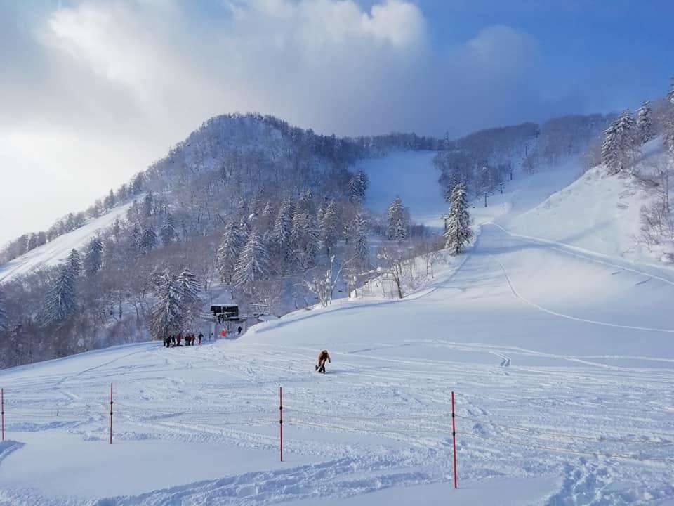 富良野 スキー 場 コース