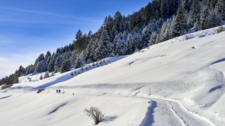 スキー 高原 奥 場 中山